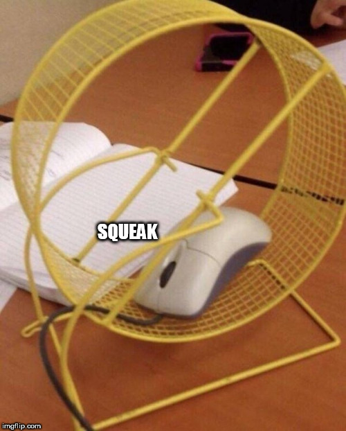 Squeak |  SQUEAK | image tagged in squeak | made w/ Imgflip meme maker