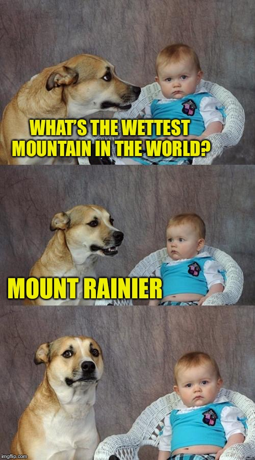 Dad Joke Dog Meme | WHAT'S THE WETTEST MOUNTAIN IN THE WORLD? MOUNT RAINIER | image tagged in memes,dad joke dog | made w/ Imgflip meme maker