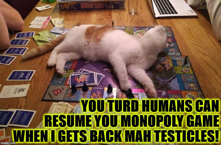 YOU TURD HUMANS CAN RESUME YOU MONOPOLY GAME; WHEN I GETS BACK MAH TESTICLES! | image tagged in me demands | made w/ Imgflip meme maker