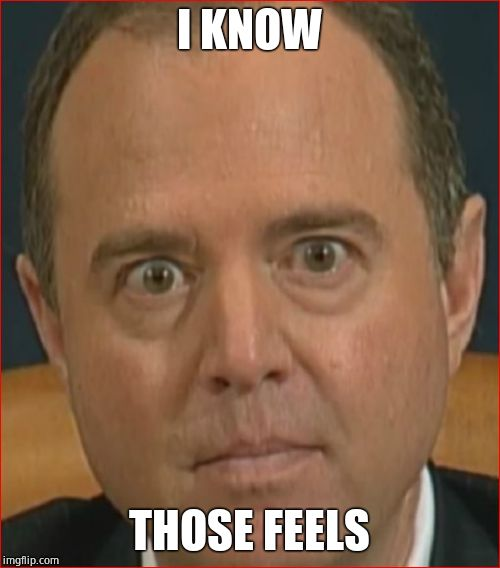 Adam Schiff | I KNOW THOSE FEELS | image tagged in adam schiff | made w/ Imgflip meme maker