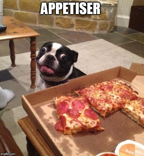 Hungry Pizza Dog | APPETISER | image tagged in hungry pizza dog | made w/ Imgflip meme maker