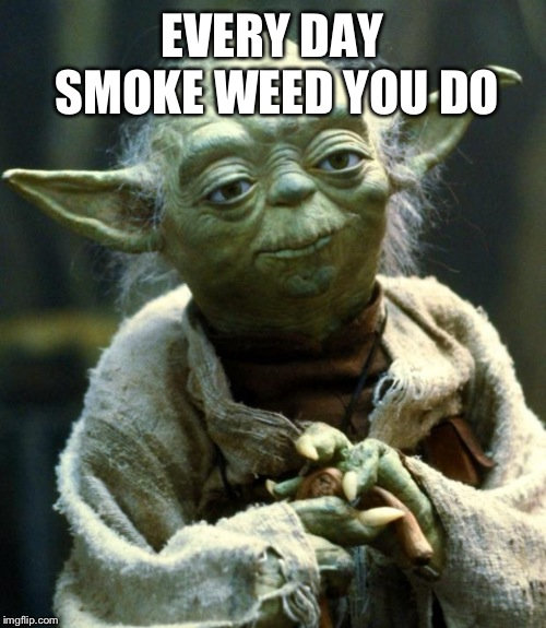 Star Wars Yoda | EVERY DAY SMOKE WEED YOU DO | image tagged in memes,star wars yoda | made w/ Imgflip meme maker