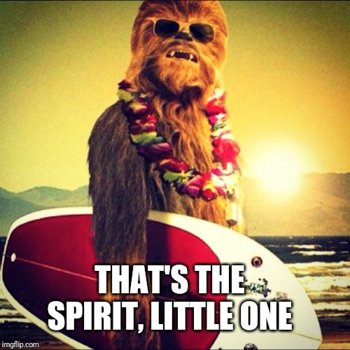 Casual Friday Chewbacca | THAT'S THE SPIRIT, LITTLE ONE | image tagged in casual friday chewbacca | made w/ Imgflip meme maker