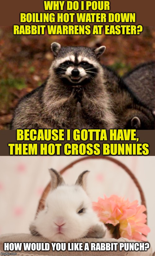 Hot cross buns! Hot cross buns! One a penny, two a penny, Hot cross bunnies | WHY DO I POUR BOILING HOT WATER DOWN RABBIT WARRENS AT EASTER? BECAUSE I GOTTA HAVE, THEM HOT CROSS BUNNIES HOW WOULD YOU LIKE A RABBIT PUNC | image tagged in memes,evil plotting raccoon,easter bunny,so hot right now,easter,buns | made w/ Imgflip meme maker