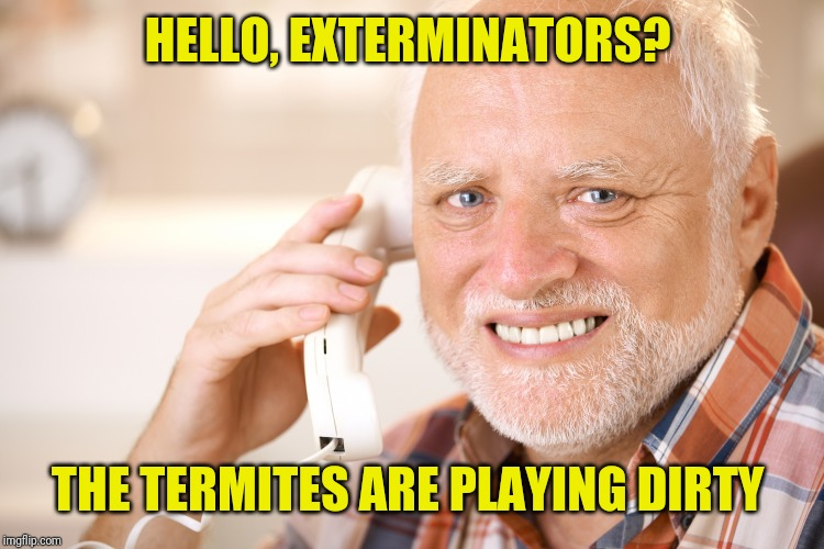 HELLO, EXTERMINATORS? THE TERMITES ARE PLAYING DIRTY | made w/ Imgflip meme maker