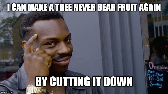 Roll Safe Think About It Meme | I CAN MAKE A TREE NEVER BEAR FRUIT AGAIN BY CUTTING IT DOWN | image tagged in memes,roll safe think about it | made w/ Imgflip meme maker