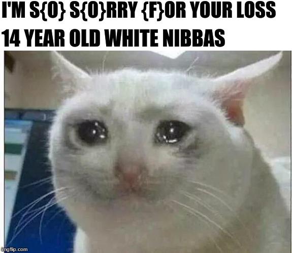 crying cat Memes - Imgflip