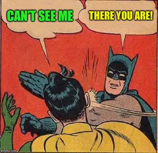 Batman Slapping Robin Meme | CAN'T SEE ME THERE YOU ARE! | image tagged in memes,batman slapping robin | made w/ Imgflip meme maker