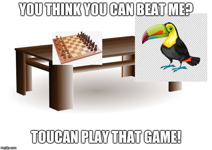 YOU THINK YOU CAN BEAT ME? TOUCAN PLAY THAT GAME! | image tagged in funny memes | made w/ Imgflip meme maker