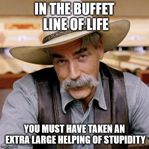 SARCASM COWBOY | IN THE BUFFET LINE OF LIFE YOU MUST HAVE TAKEN AN EXTRA LARGE HELPING OF STUPIDITY | image tagged in sarcasm cowboy | made w/ Imgflip meme maker