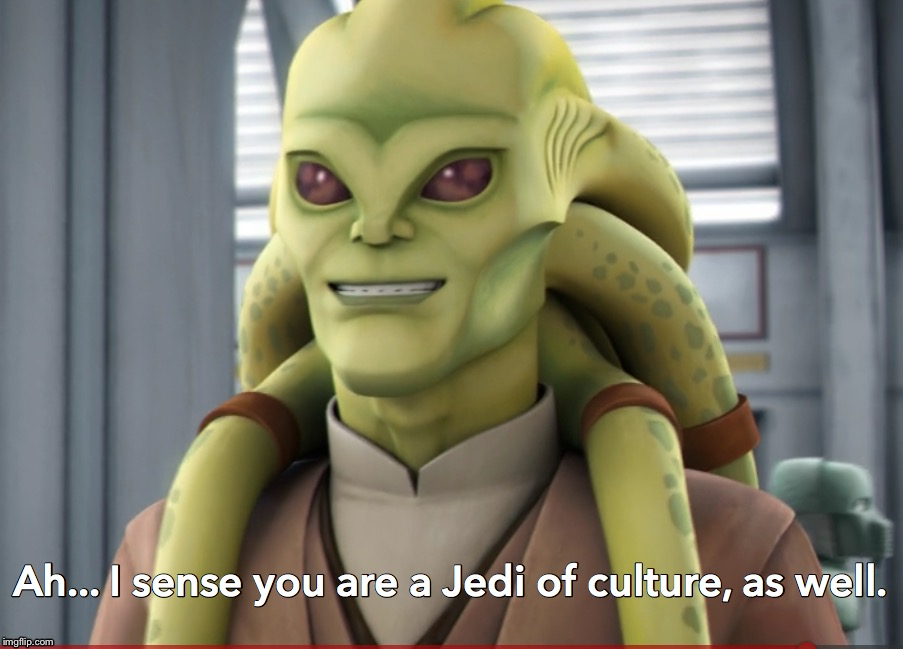 When you're working at a fast food restaurant and the customer gives a Star Wars name as the order name: | image tagged in kit fisto jedi of culture,memes,star wars,ah i see you are a man of culture as well,funny memes | made w/ Imgflip meme maker