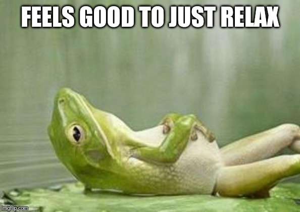 relax frog | FEELS GOOD TO JUST RELAX | image tagged in relax frog | made w/ Imgflip meme maker