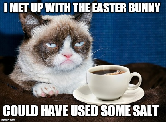 I MET UP WITH THE EASTER BUNNY COULD HAVE USED SOME SALT | image tagged in grumpy cat coffee | made w/ Imgflip meme maker