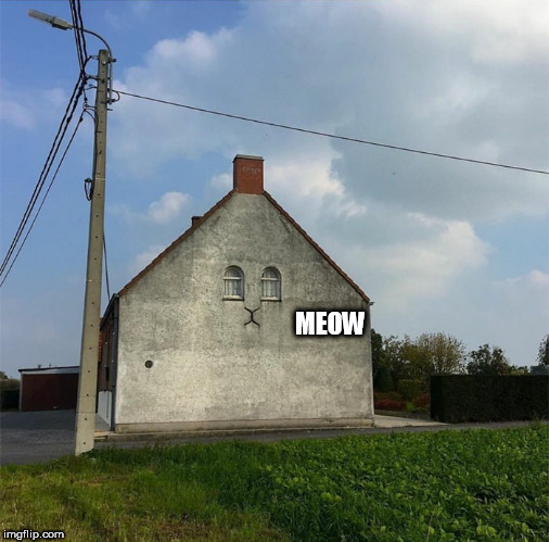 cat house | MEOW | image tagged in cat house | made w/ Imgflip meme maker