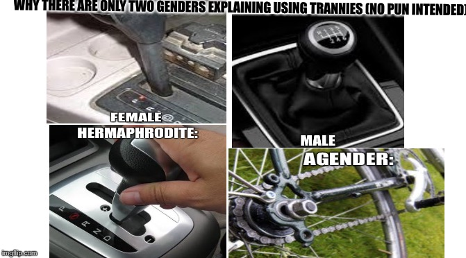 Hope this metaphor helps :) | WHY THERE ARE ONLY TWO GENDERS EXPLAINING USING TRANNIES (NO PUN INTENDED): | image tagged in transgender | made w/ Imgflip meme maker