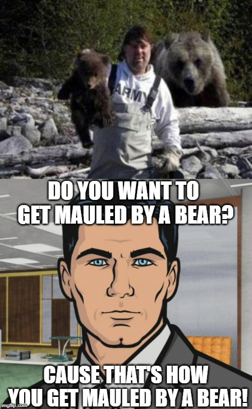 DO YOU WANT TO GET MAULED BY A BEAR? CAUSE THAT'S HOW YOU GET MAULED BY A BEAR! | image tagged in memes,archer,bear,stupid people | made w/ Imgflip meme maker