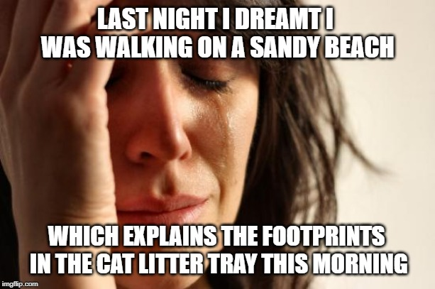 First World Problems Meme | LAST NIGHT I DREAMT I WAS WALKING ON A SANDY BEACH WHICH EXPLAINS THE FOOTPRINTS IN THE CAT LITTER TRAY THIS MORNING | image tagged in memes,first world problems | made w/ Imgflip meme maker