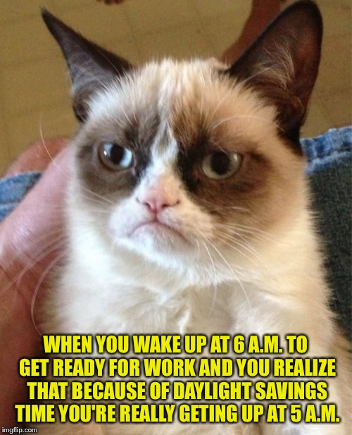 Grumpy Cat | WHEN YOU WAKE UP AT 6 A.M. TO GET READY FOR WORK AND YOU REALIZE THAT BECAUSE OF DAYLIGHT SAVINGS TIME YOU'RE REALLY GETING UP AT 5 A.M. | image tagged in memes,grumpy cat | made w/ Imgflip meme maker