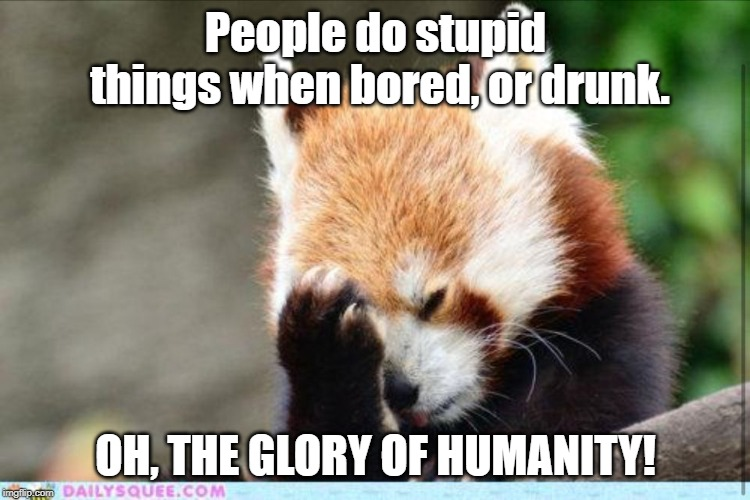 In reaction to seeing man lighting his nose on Fire. | People do stupid things when bored, or drunk. OH, THE GLORY OF HUMANITY! | image tagged in face palm red panda,face palm,wow,stupid,dumb,eye roll | made w/ Imgflip meme maker
