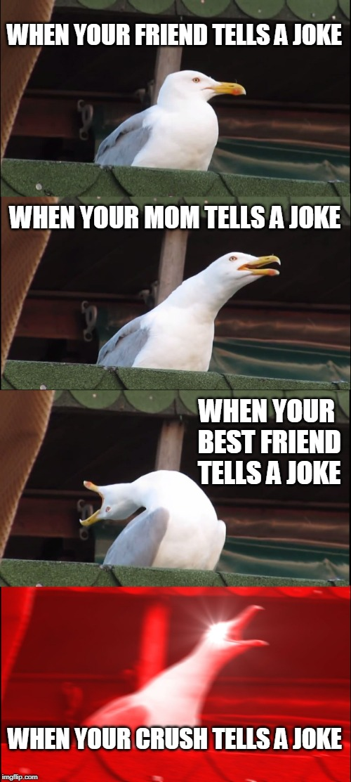 Inhaling Seagull | WHEN YOUR FRIEND TELLS A JOKE WHEN YOUR MOM TELLS A JOKE WHEN YOUR BEST FRIEND TELLS A JOKE WHEN YOUR CRUSH TELLS A JOKE | image tagged in memes,inhaling seagull | made w/ Imgflip meme maker