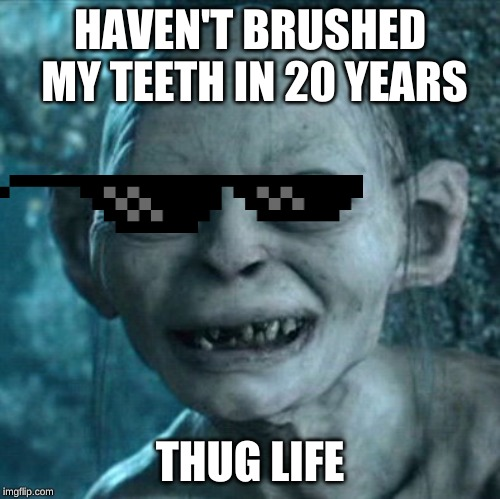 Gollum Meme | HAVEN'T BRUSHED MY TEETH IN 20 YEARS THUG LIFE | image tagged in memes,gollum | made w/ Imgflip meme maker