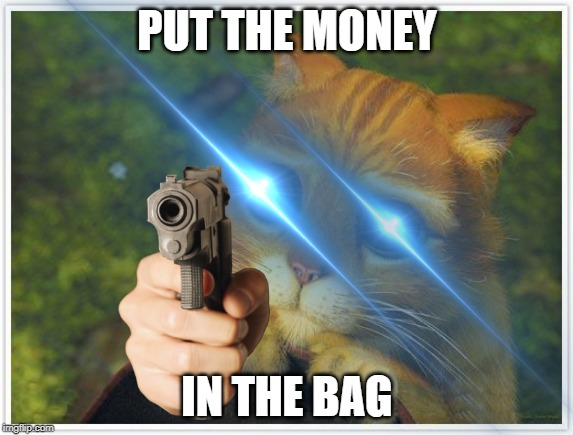 PUT THE MONEY IN THE BAG | image tagged in memes,shrek cat | made w/ Imgflip meme maker