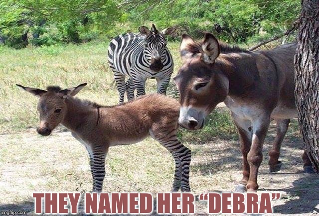 "THEY NAMED HER ""DEBRA"" 