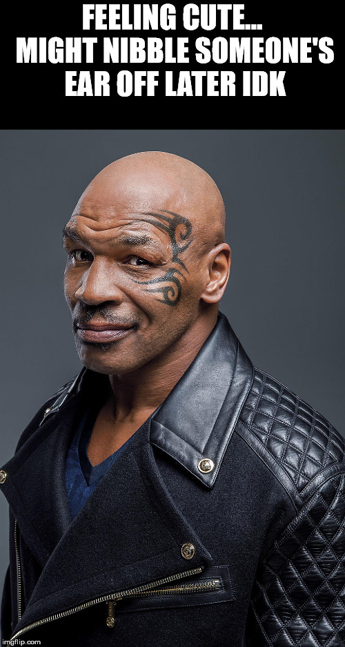 FEELING CUTE... MIGHT NIBBLE SOMEONE'S EAR OFF LATER IDK | image tagged in mike tyson | made w/ Imgflip meme maker