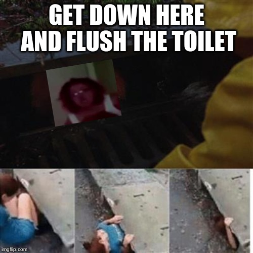 pennywise in sewer | GET DOWN HERE AND FLUSH THE TOILET | image tagged in pennywise in sewer | made w/ Imgflip meme maker