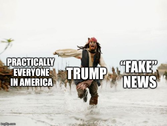 "A day in the life of president Trump | PRACTICALLY EVERYONE IN AMERICA TRUMP ""FAKE"" NEWS 