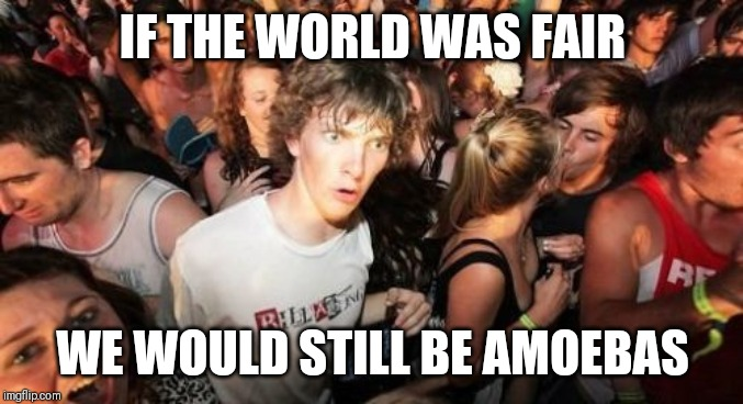 Sudden Clarity Clarence Meme | IF THE WORLD WAS FAIR WE WOULD STILL BE AMOEBAS | image tagged in memes,sudden clarity clarence,memes | made w/ Imgflip meme maker