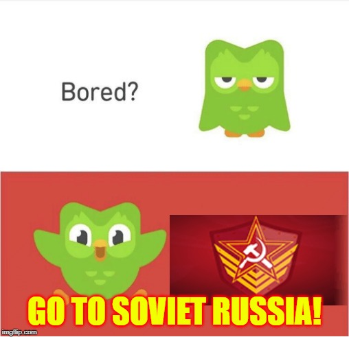 DUOLINGO BORED | GO TO SOVIET RUSSIA! | image tagged in duolingo bored | made w/ Imgflip meme maker