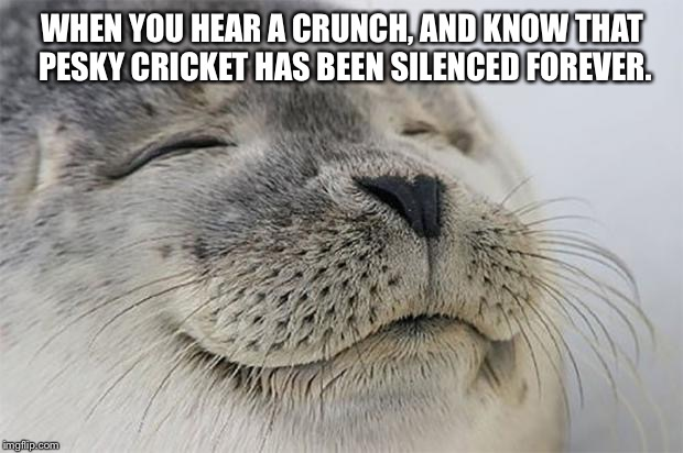 Satisfied Seal | WHEN YOU HEAR A CRUNCH, AND KNOW THAT PESKY CRICKET HAS BEEN SILENCED FOREVER. | image tagged in memes,satisfied seal | made w/ Imgflip meme maker