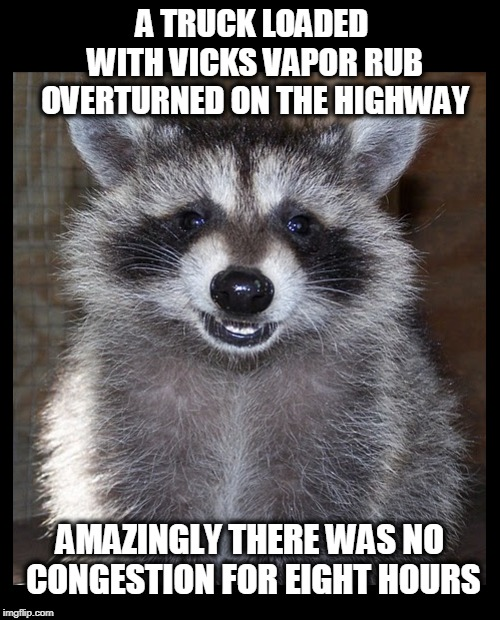 Rollin', rollin', rollin'... | A TRUCK LOADED WITH VICKS VAPOR RUB OVERTURNED ON THE HIGHWAY AMAZINGLY THERE WAS NO CONGESTION FOR EIGHT HOURS | image tagged in traffic jam,cold season,lame pun coon,raccoon | made w/ Imgflip meme maker