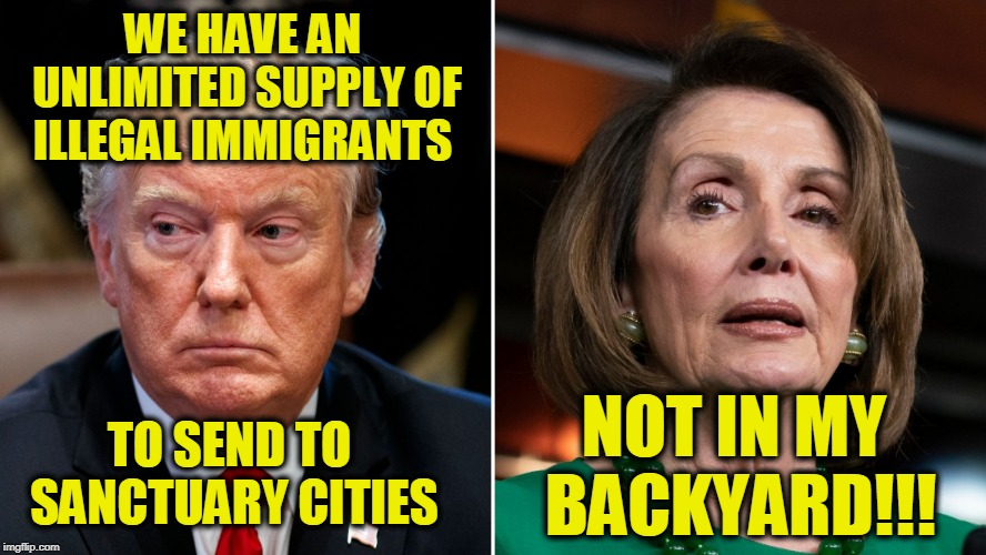 Make Them an Offer They Will Instantly Refuse | WE HAVE AN UNLIMITED SUPPLY OF ILLEGAL IMMIGRANTS NOT IN MY BACKYARD!!! TO SEND TO SANCTUARY CITIES | image tagged in illegal immigration,sanctuary cities,president trump,nancy pelosi | made w/ Imgflip meme maker