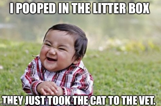 Evil Toddler Meme | I POOPED IN THE LITTER BOX THEY JUST TOOK THE CAT TO THE VET. | image tagged in memes,evil toddler | made w/ Imgflip meme maker