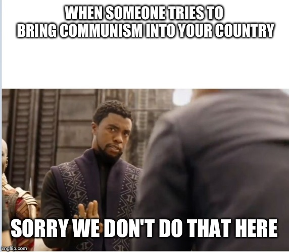 We don't do that here | WHEN SOMEONE TRIES TO BRING COMMUNISM INTO YOUR COUNTRY SORRY WE DON'T DO THAT HERE | image tagged in we don't do that here | made w/ Imgflip meme maker