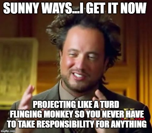 Fling it | SUNNY WAYS...I GET IT NOW PROJECTING LIKE A TURD FLINGING MONKEY SO YOU NEVER HAVE TO TAKE RESPONSIBILITY FOR ANYTHING | image tagged in justin trudeau,trudeau,liberal logic,liberal hypocrisy,stupid liberals,meanwhile in canada | made w/ Imgflip meme maker