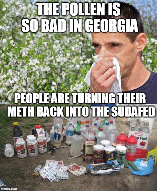 Bad allergy season? | THE POLLEN IS SO BAD IN GEORGIA PEOPLE ARE TURNING THEIR METH BACK INTO THE SUDAFED | image tagged in georgia,pollen,meth,sudafed,allergies,memes | made w/ Imgflip meme maker