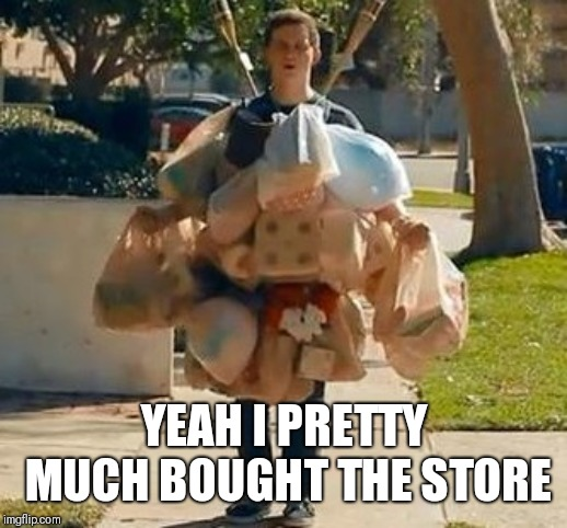 Groceries | YEAH I PRETTY MUCH BOUGHT THE STORE | image tagged in groceries | made w/ Imgflip meme maker