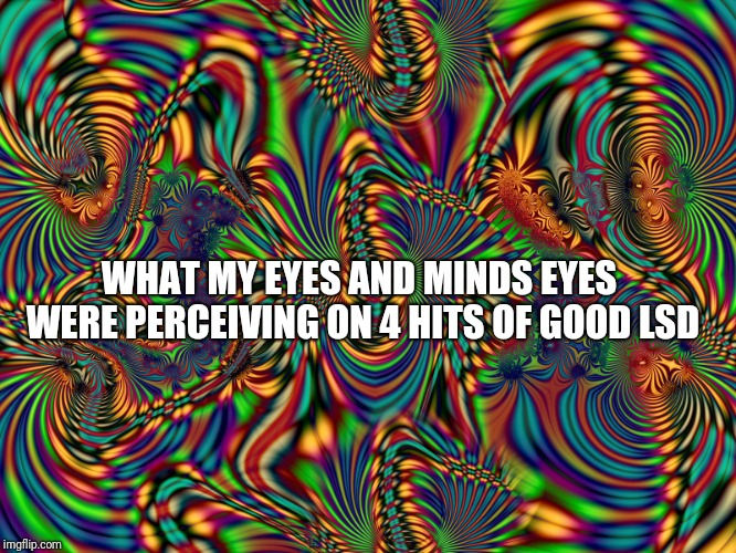 WHAT MY EYES AND MINDS EYES WERE PERCEIVING ON 4 HITS OF GOOD LSD | image tagged in visual | made w/ Imgflip meme maker