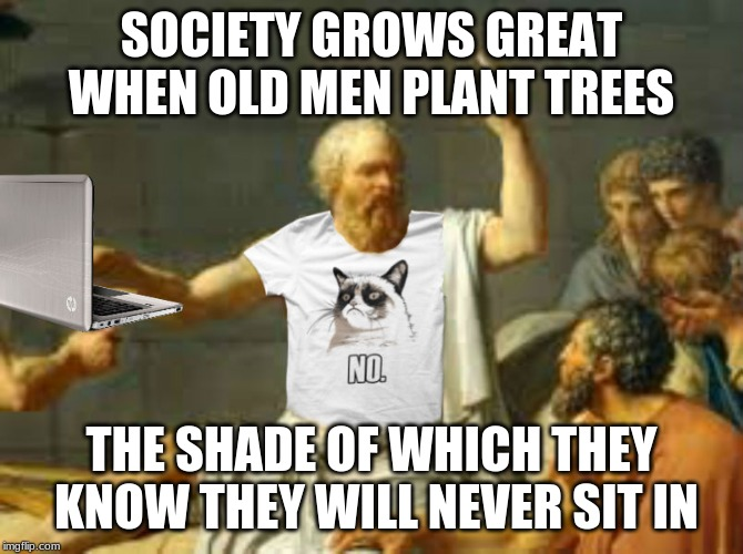 Wise words... | SOCIETY GROWS GREAT WHEN OLD MEN PLANT TREES THE SHADE OF WHICH THEY KNOW THEY WILL NEVER SIT IN | image tagged in socrates properly attired,deep thoughts | made w/ Imgflip meme maker