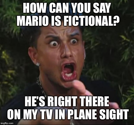 DJ Pauly D Meme | HOW CAN YOU SAY MARIO IS FICTIONAL? HE'S RIGHT THERE ON MY TV IN PLANE SIGHT | image tagged in memes,dj pauly d | made w/ Imgflip meme maker