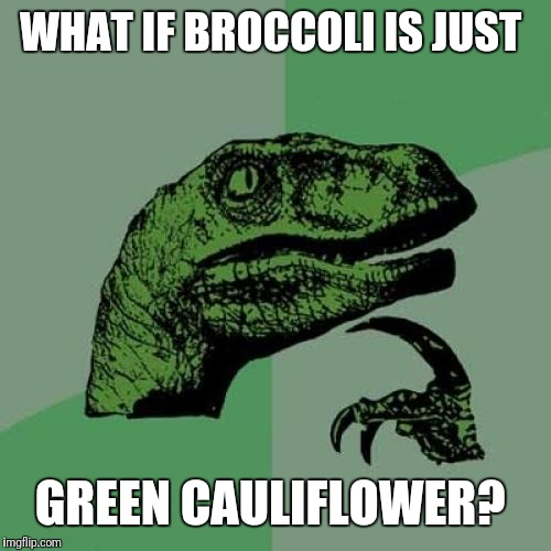Philosoraptor | WHAT IF BROCCOLI IS JUST GREEN CAULIFLOWER? | image tagged in memes,philosoraptor | made w/ Imgflip meme maker
