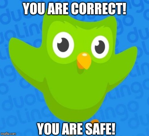 duolingo bird | YOU ARE CORRECT! YOU ARE SAFE! | image tagged in duolingo bird | made w/ Imgflip meme maker