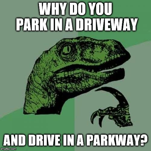 Philosoraptor Meme | WHY DO YOU PARK IN A DRIVEWAY AND DRIVE IN A PARKWAY? | image tagged in memes,philosoraptor | made w/ Imgflip meme maker