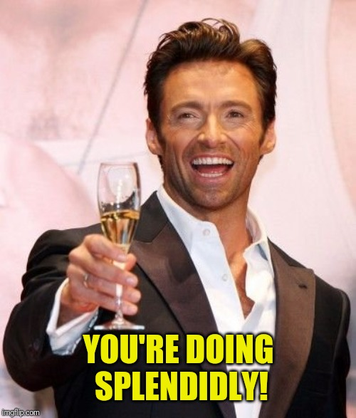 Hugh Jackman Cheers | YOU'RE DOING SPLENDIDLY! | image tagged in hugh jackman cheers | made w/ Imgflip meme maker