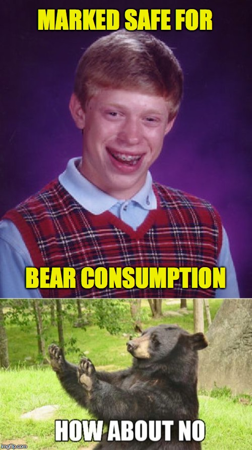 MARKED SAFE FOR BEAR CONSUMPTION | image tagged in memes,bad luck brian,how about no bear | made w/ Imgflip meme maker