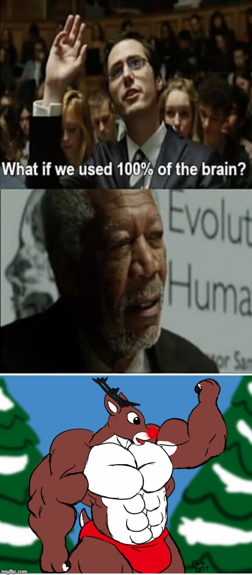 Next level human evolution | image tagged in funny memes | made w/ Imgflip meme maker