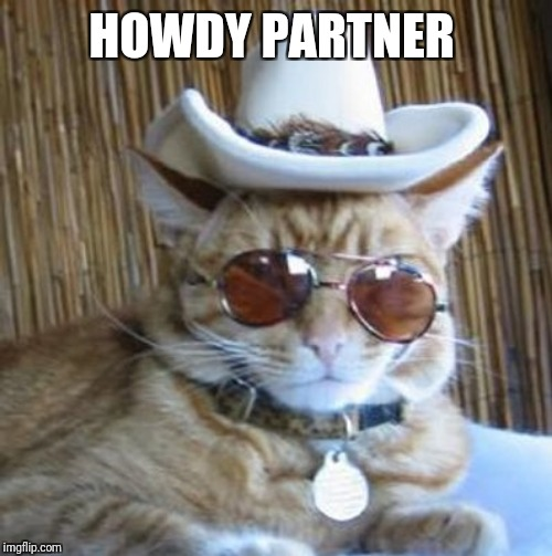 Howdy | HOWDY PARTNER | image tagged in howdy | made w/ Imgflip meme maker